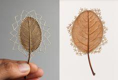 Crocheted Leaf Sculptures Susanna Bauer 26