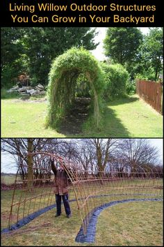 Living Willow outdoor structures that you w .-Living Willow Outdoor-Strukturen, die Sie in Ihrem Garten wachsen lassen Living Willow Outdoor structures that let you grow in your garden - Garden Structures, Outdoor Structures, Living Willow, Dream Garden, Garden Planning, Garden Projects, Outdoor Projects, Backyard Projects, Garden Crafts