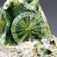 Wavellite - Arkansas / Mineral Friends <3