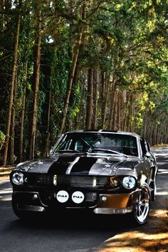 Love 'em or hate 'em Ford Mustang Shelby GT 500 is one heck of a car. Ford Mustang Shelby Gt, Shelby Mustang Gt500, Mustang Cars, Ford Mustangs, 1967 Mustang, American Muscle Cars, Dream Cars, Gt 500, Ford Classic Cars