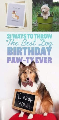 It's your party, you can bark if you want to.