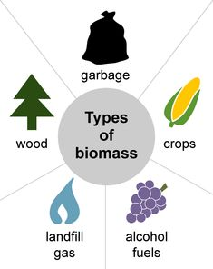 Image with different kinds of biomass types: wood, crops, garbage, landfill gas,. - One Week Unit-Energy Resources - Geothermal Energy Renewable Energy Projects, Renewable Sources Of Energy, Biomass Energy, Biomass Boiler, Stem Classes, Fourth Industrial Revolution, Greenhouse Effect, Geothermal Energy, Energy Resources