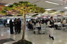 Jantar a inglesa – Celebração de acordo entre o Governo do Estado do Paraná e a Evonik Industries – Museu Oscar Niemeyer (Foto: Gilson Camargo).