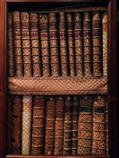 Old books on the wooden shelves at the Biblioteca Angelica, Rome. The library holdings were also enriched by several entries, like part of Egidio da Viterbo (Giles Antonini of Viterbo)'s personal collection of books.