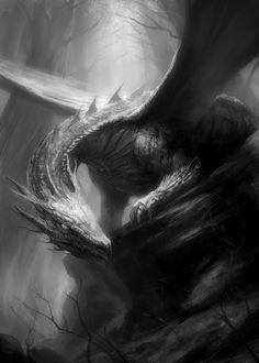 shadow dragon/dark dragon/black dragon/evilo dragon