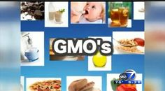 """Frankenfood"" Fear: The GMO debate"