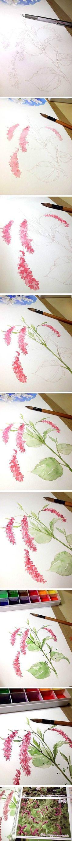【绘画教程 插画家园原创水彩awww