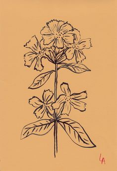 A new show by English artist, Lucy Auge, featuring 500 flowers drawn on vintage papers from the and displayed in a Georgian building in Bath. Gravure Illustration, Illustration Art, Art Sketches, Art Drawings, You Draw, Art Graphique, Illustrations, New Art, Art Inspo