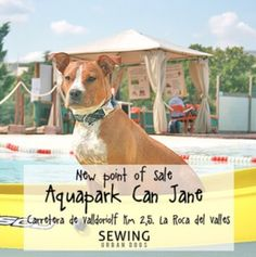 New point of sale AQUAPARK CAN JANE