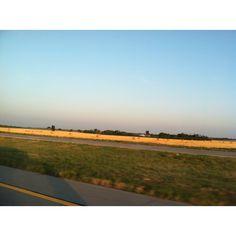 Golden Fields of Grain in Kansas. Luminescent
