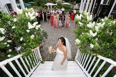 Lilac Inn - Look at those beautiful lilacs!