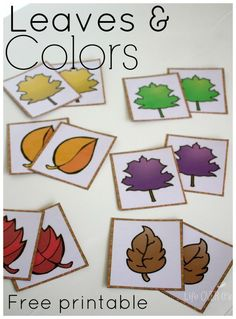 Free Fall Colors Printable Actvities for Preschoolers. Three fun activities for fall!