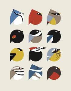 bird icon set by student cara thomson minimalist art digital graphic illustration Vogel Illustration, Pattern Illustration, Charley Harper, Doodle Drawing, Affinity Designer, Bird Patterns, Art Graphique, Grafik Design, Bird Art