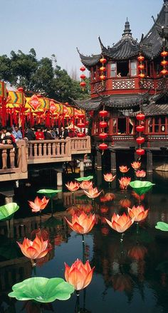 Yuyuan Garden tea house In Shanghai, China • photo: Justin Guariglia
