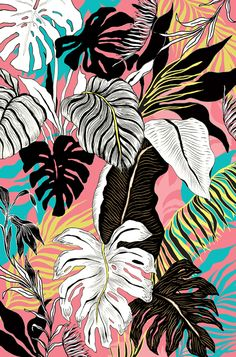 Hawaiian seamless pattern with tropical fruits and flowers. - belt models Hawaiian seamless pattern with tropical fruits and flowers. Tropical Flowers, Art Tropical, Motif Tropical, Tropical Pattern, Tropical Leaves, Tropical Fruits, Tropical Fabric, Tropical Vibes, Jungle Pattern