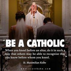 Be a Catholic Catholic Beliefs, Catholic Memes, Catholic Prayers, Catholic Saints, Roman Catholic, Christianity, Catholic Art, Catholic Churches, Religious Pictures
