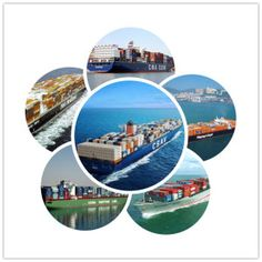Ocean Care Forwarders Pvt. Ltd Ensuring Timely and Intact Delivery of Client's Consignment.
