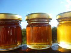 Τα σκουρόχρωμα μέλια και τα μέλια που προέρχονται από μελιτώματα είναι θρεπτικότερα. All the honey varieties we collected this year!