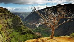 Waimea Canyon on Kauai is pretty spectacular!