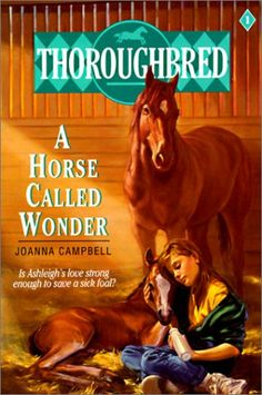 Best Horse Books Shows And Movies On Pinterest