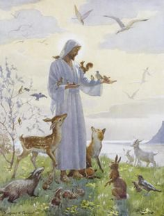 God loves everyone and I love him to. And Jesus's is not just on the cross he's in everyone's heart to I believe in you lord Jesus Christ you are my family Religious Pictures, Jesus Pictures, Religious Art, Image Jesus, Saint Esprit, Jesus Art, The Good Shepherd, Jesus Is Lord, Christian Art