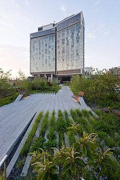 @highlinenyc Diller Scofidio + Renfro, High Line  by: Iwan Baan