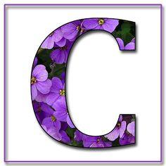 """LA ABUELITA ENCANTADA BLOG: """"Flores azules y violetas"""" Con letras del alfabeto del libro de recuerdos en formato JPG y PNG"""