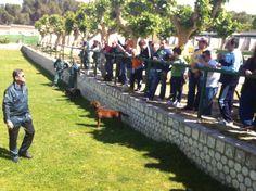 Exhibición de perros de la Guardia Civil a la Fundación Juan XXIII