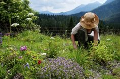 Research: Women Live Longer When Surrounded by Nature
