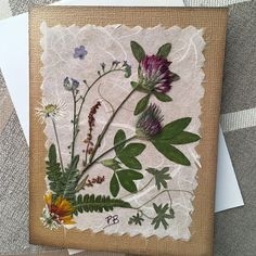 Northwest Wildflowers Card Dried Pressed Flower Card Boho Card Pacific NW Wild Flowers Real Petals and Ferns Blank Greeting Card Old Book Crafts, Paper Crafts, Nature Collage, Pressed Flower Art, How To Preserve Flowers, Flower Cards, Greeting Cards Handmade, Wild Flowers, Card Making