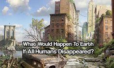 O que Aconteceria se os Seres Humanos Desaparecessem do Planeta Terra?