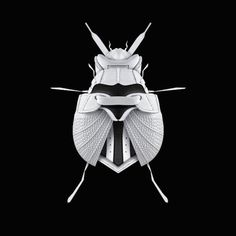 Sneakers Insects – Fubiz™