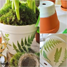 Martha Stewart fern stickers on a painted pot, then sealed. Decoupage prints would work, too.