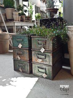 zetas garden shop | It's my visual life - Paulina Arcklin: Zetas!