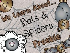 Bats and Spiders printable graphic organizers, graphs & more