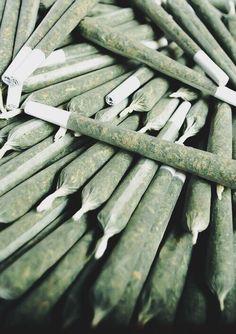 Una de las mejores cosas de fumar marihuana, es... - http://growlandia.com/highphotos/media/Una-de-las-mejores-cosas-de-fumar-marihuana-es/