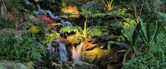 Rainbow Springs state park - open 8am-sundown, $9 total + rentals