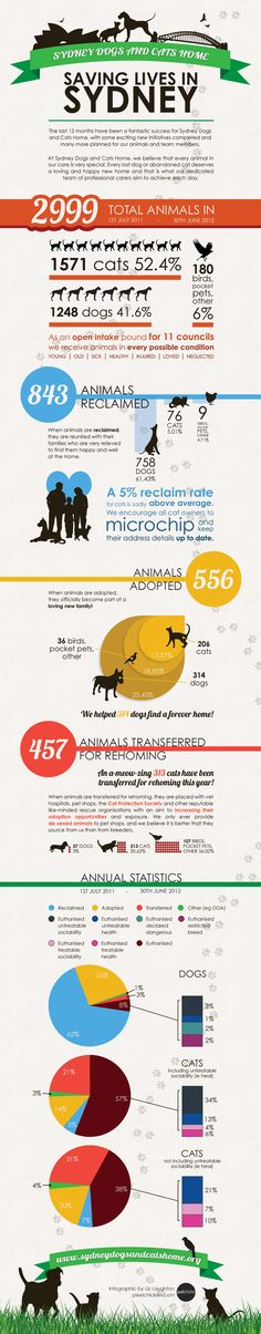 sydney-dogs-and-cats-home-infographic