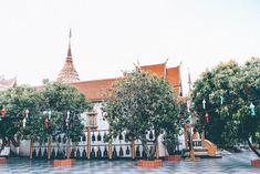 LONE DRIFTERS   Onze beste Nieuw-Zeeland tips voor je rondreis Thailand, Chiang Mai, Bangkok, Lonely, Paris Skyline, Dolores Park, Street View, Travel, Rice
