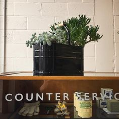 Our House Keepers Buckets are great for many purposes including holding plants.