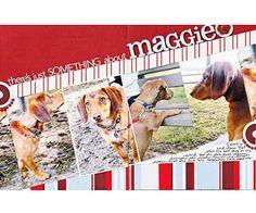 Dog Scrapbook Layout Ideas: Angled Dog Layout