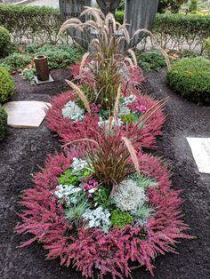 Hydrangea Seeds, Hydrangea Care, Horticulture, Cemetery Decorations, Cemetery Flowers, Garden Features, Garden Gates, Garden Projects, Backyard Landscaping