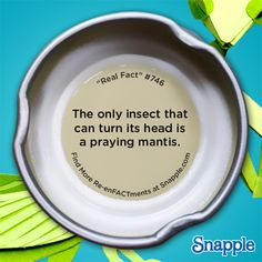 Snapple Re-enFACTments #746