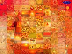 Orange, orange, orange #kleurinspiratie orange-oranje