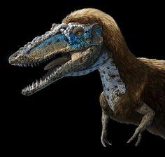 New Stars in the Dinosaur World, PM Magazin April 2015. Qianzhousaurus sinensis, aka Pinocchio rex. Art by Román García Mora.
