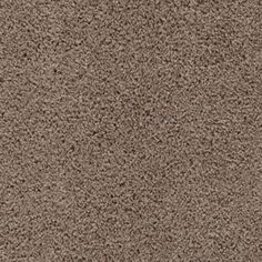 Key Trend Weathered Taupe  Guest Bedroom carpet