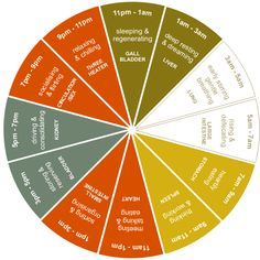 Chinese Medicine Body Clock