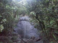 Cascada La Coca, El Yunque, Rio Grande, PR