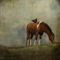 Jamie Heiden, A Little to the Left and Up a Bit by jamie heiden, via Flickr