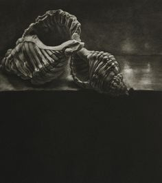'discarded objects (calcium) ii'  mezzotint | kate riley